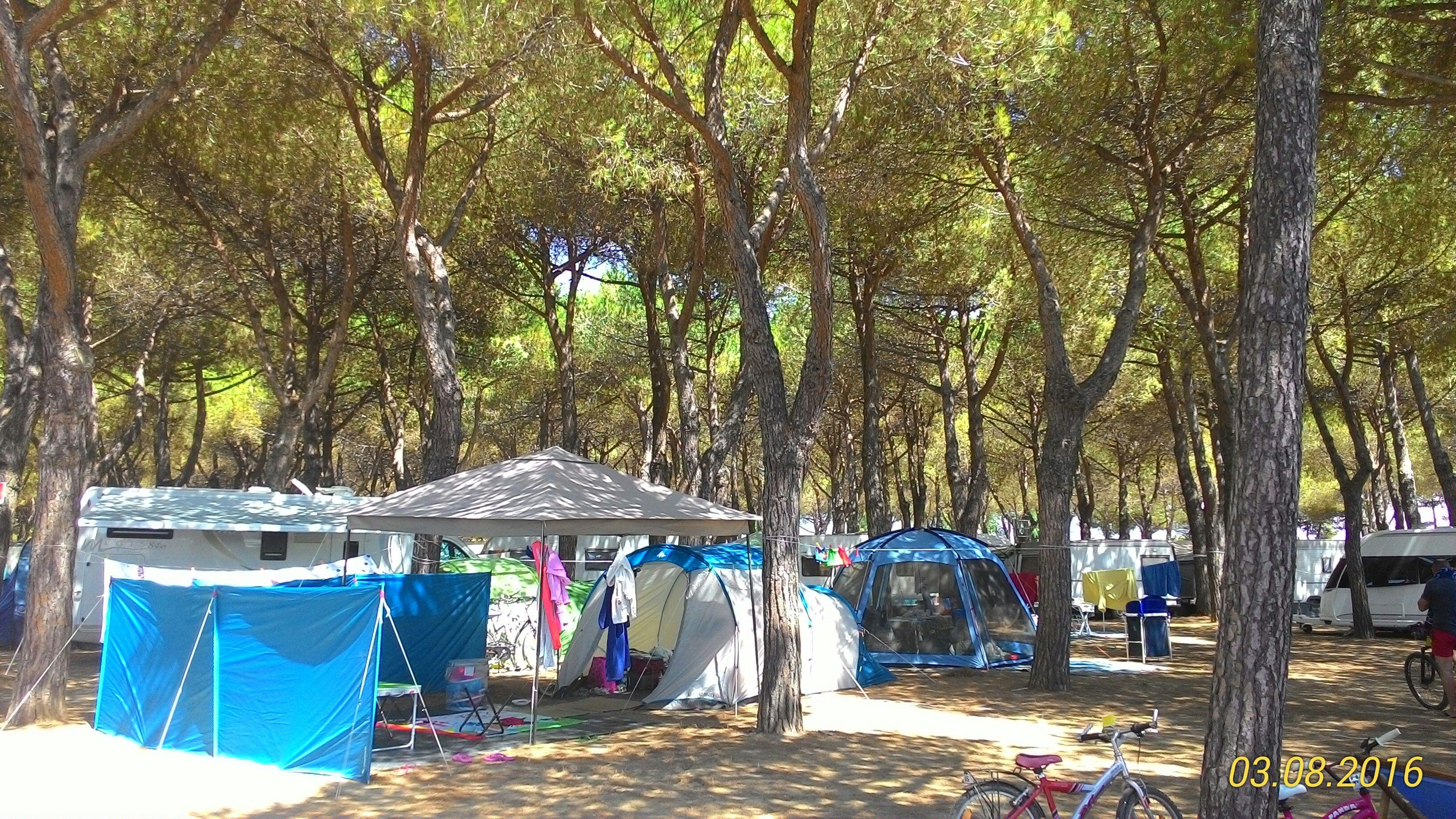 Piazzola per camper o tenda pineta campeggio orbetello - Piscina piazzola ...